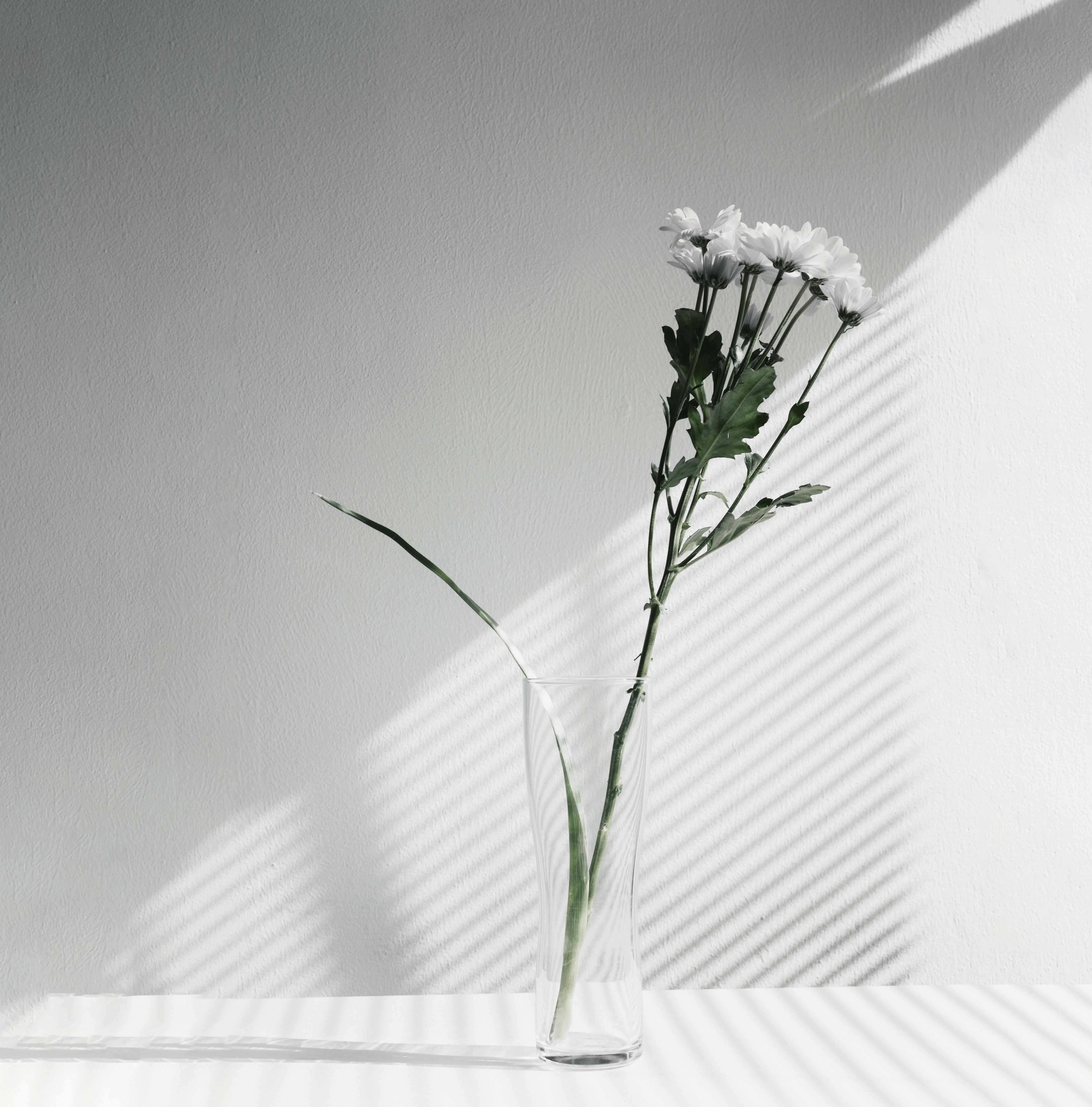 0.3 flower 2